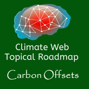 brain on dark green background words topical roadmap carbon offsets